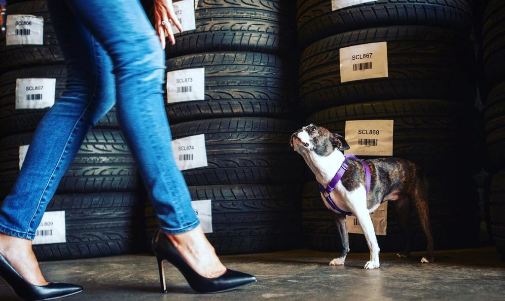Stop Overpaying for Tires